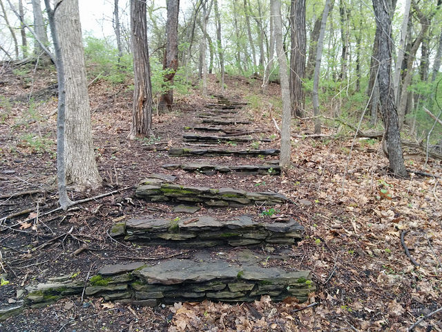 Microsteps to Resilience