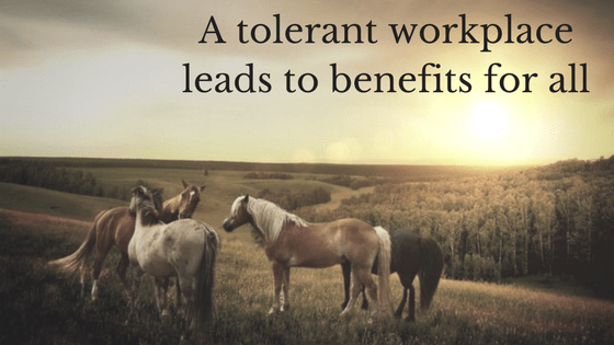 A tolerant workplace leads to benefits for all – including your bottom line