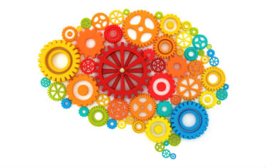 Mental Health Training - Brain filled with different coloured cogs