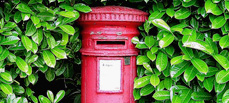 Traditional Royal Mail Postal Box with bright green foliage surrounding it