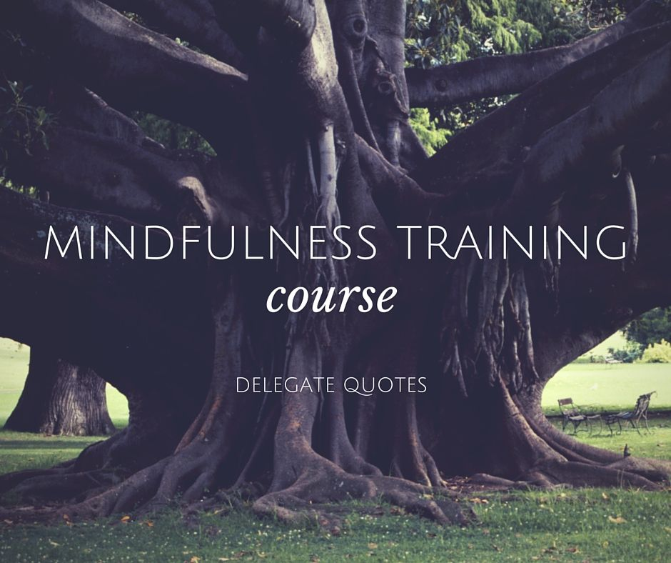 Mindfulness Training Delegate Quotes