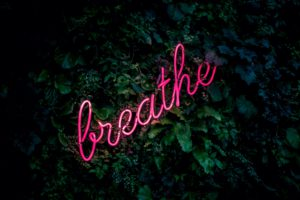 The word 'breathe' in pink fluorescent tube lighting set against a background of green foliage.