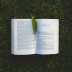 A book lying open on the grass with a green leaf placed by the spine as a bookmark.