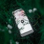 A white smartphone laid on some green foliage