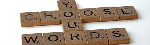 Choose your words - DESC model
