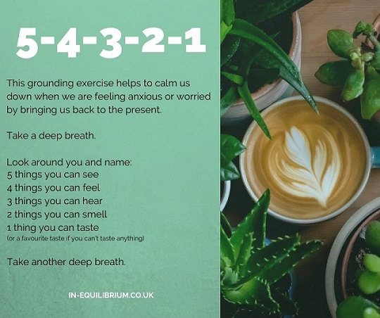 Instructions for the 5-4-3-2-1 grounding exercise with a photo of a cup of coffee surrounded by house plants